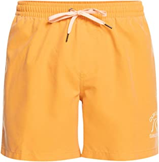 "Quiksilver Men's Surfwash 15"" Board Shorts"