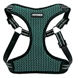 Voyager Step-In Flex Dog Harness - All Weather Mesh, Step In Adjustable Harness for Small and Medium Dogs by Best Pet Supplies - Turquoise Base, Large