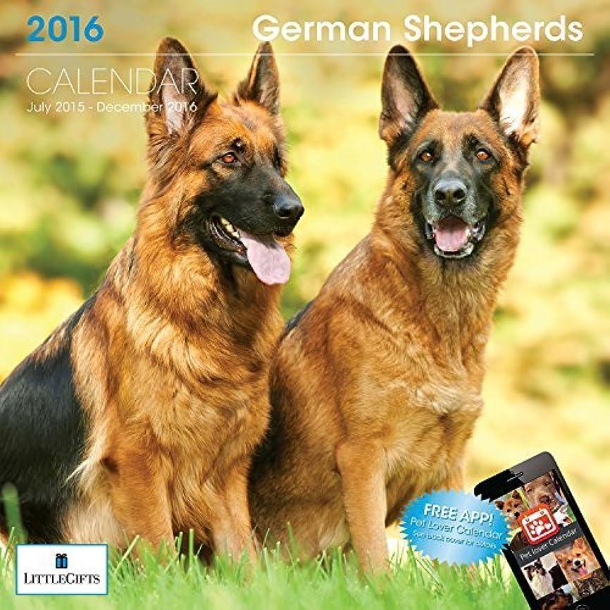 石実質的にLittleGifts German Shepherd 2016 Calendar (1242) [並行輸入品]