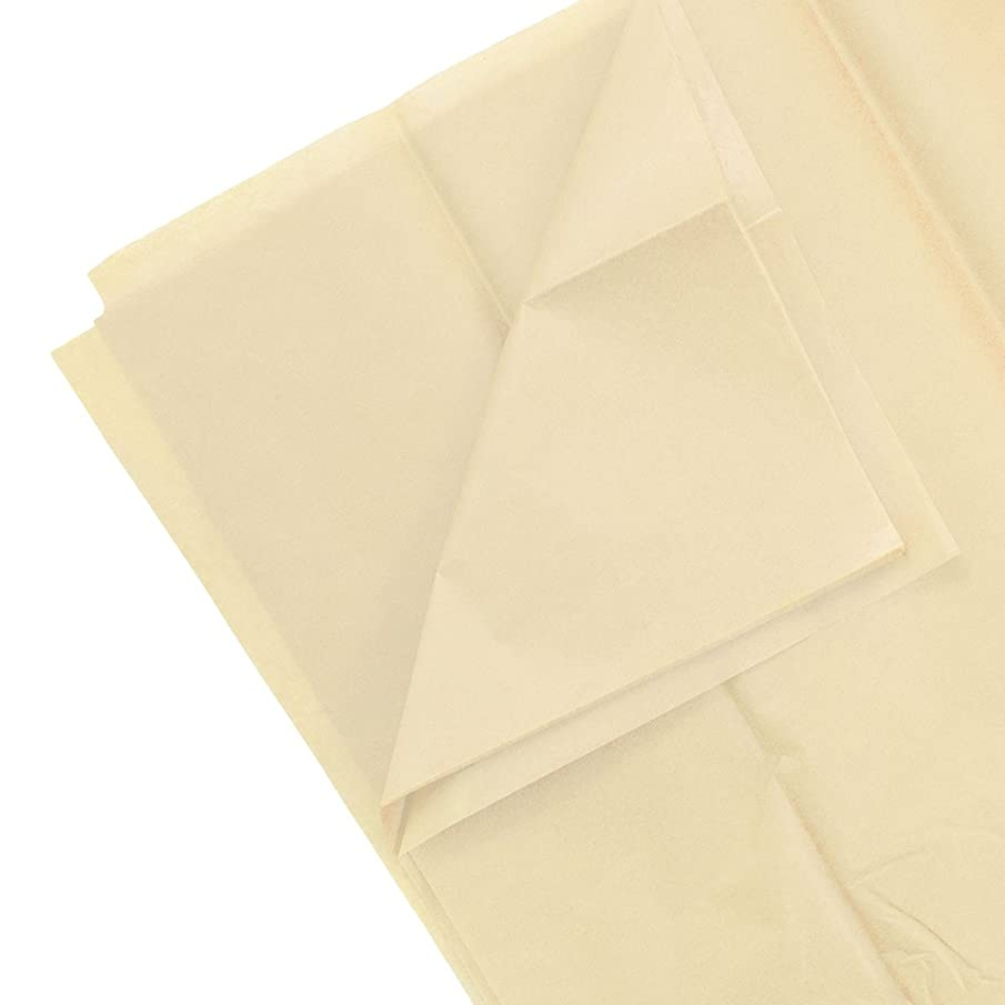 JAM PAPER Tissue Paper - Ivory - 10 Sheets/Pack