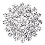 EVER FAITH Women's Austrian Crystal Elegant Flower Leaf Bridal Corsage Brooch Pin Clear Silver-Tone