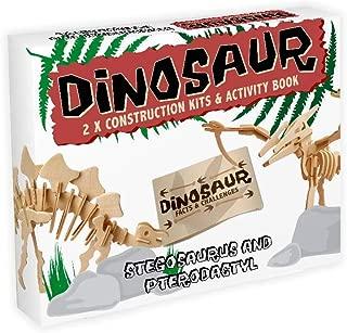 Professor Puzzle Dinosaur Kit Stegosaurus and Pterodactyl Brain Teaser Puzzle
