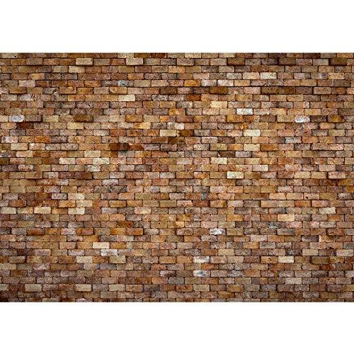 Vlies fotobehang 300x210 cm - Top ! Premium plus fotobehang. Muurschilderingen XXL muurschildering beeld fotobehang behang wandbehang wanddecoratie wand stenen muur stenen muur - no. 170