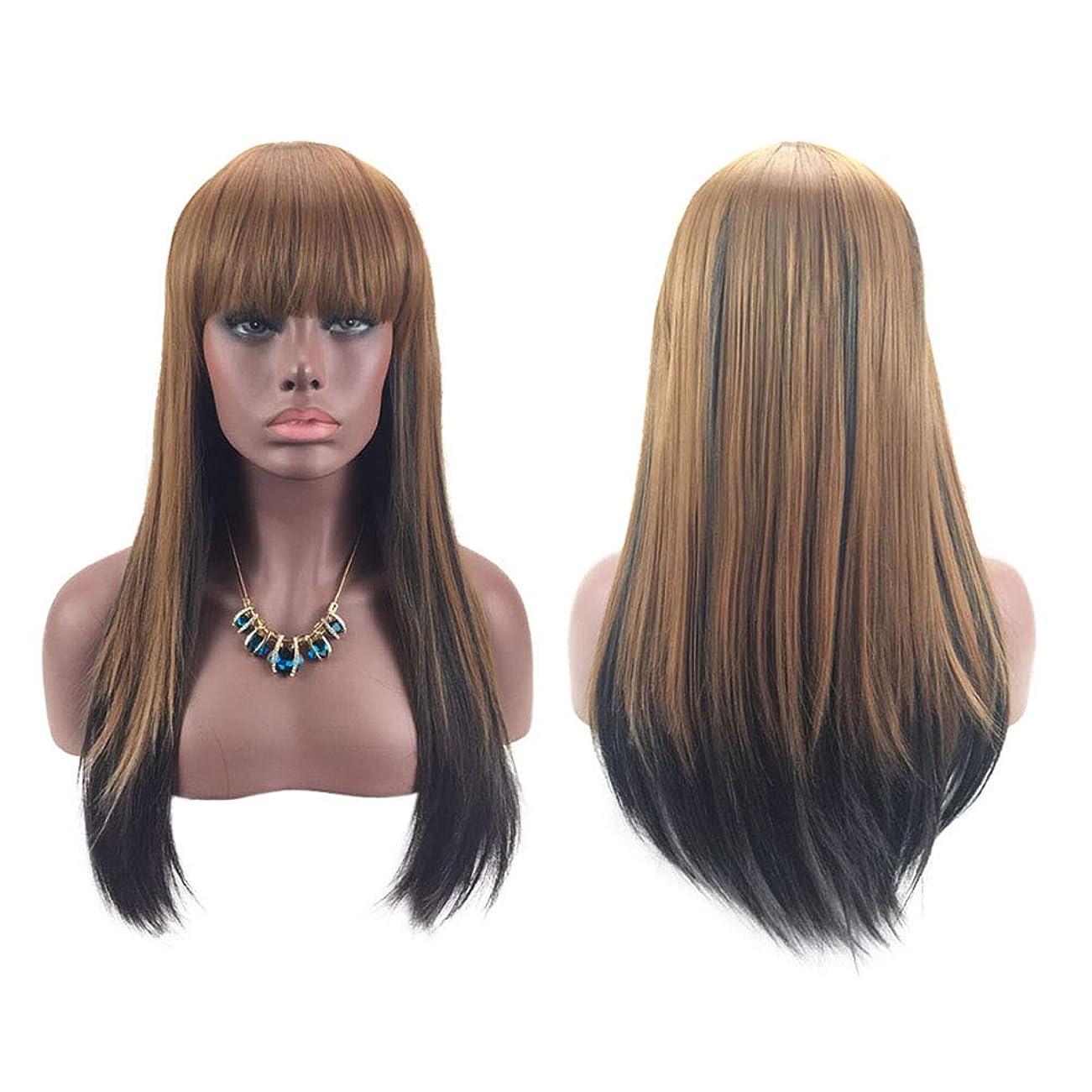 対角線輝くピーク女性ファッションロングストレートヘアウィッグ自然に見える絶妙な弾性ネットウィッグカバー(OM-3509)