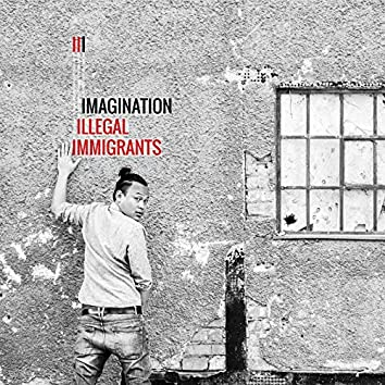 III - Illegal Immigrants