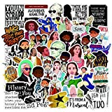 Hamilton Stickers| 50 Pack | Vinyl Waterproof Stickers for Laptop,Bumper,Water Bottles,Computer,Phone,Hard hat,Car Stickers and Decals,( Hamilton-50)