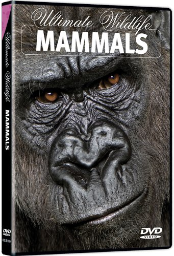 Ultimate Wildlife: Mammals / (Ws Amar) [DVD] [Region 1] [NTSC] [US Import]