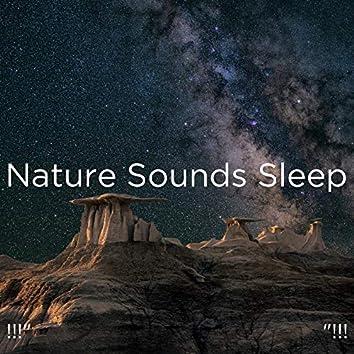 "!!!"" Nature Sounds Sleep ""!!!"