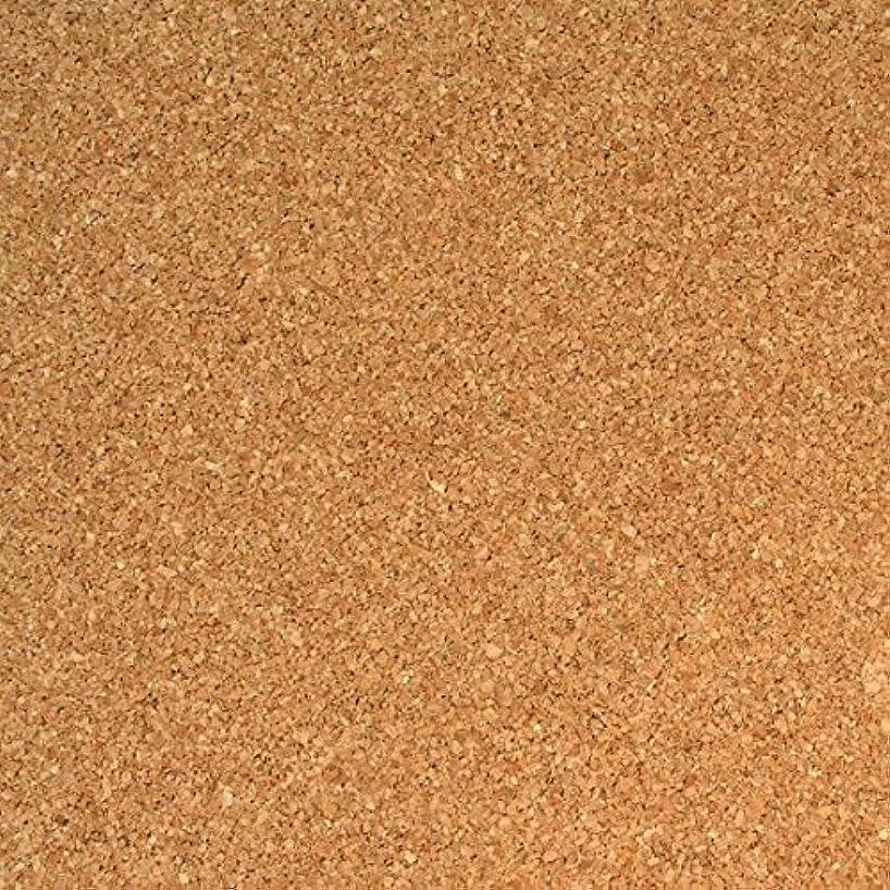 Vaessen Creative Sticky Cork Sheets 2-Piece, Brown, One Size