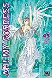Ah! My Goddess T45