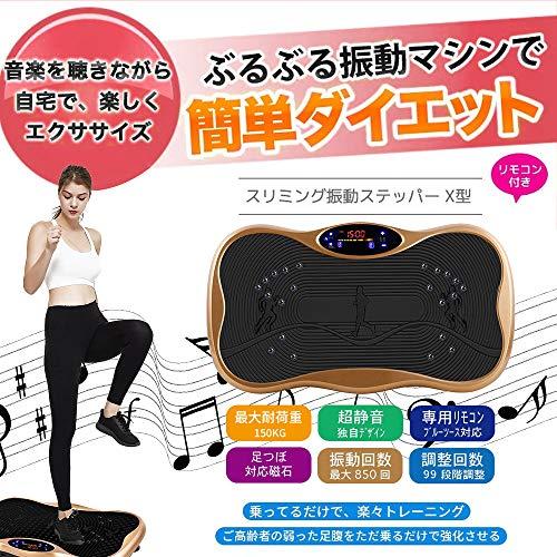 [5年保証]2021最新版振動マシン3D振動5種類のプログラムモード振動調節99段階Bluetooth音楽プレイヤー機能付脂肪燃焼ぶるぶる超静音フィットネスマシン体幹強化日本語取扱説明書