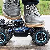 WGFGXQ Coche RC de Alta Velocidad 1/14 Modelo de Control Remoto por Radio Rock Monster Truck 4WD Cars 2.4G Buggy Off-Road 4x4 Crawlers Motores Dobles Drive Bigfoot Vehículo Juguete para niños Niños