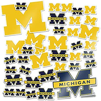 University of Michigan Wolverines UM U of M Sticker Vinyl Decal Laptop Water Bottle Car Scrapbook  Type 1 Sheet