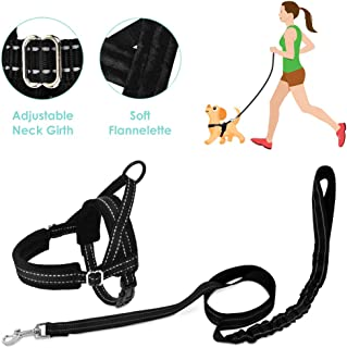 SlowTon No Pull Small Dog Harness and Leash, Heavy Duty Easy for Walk Vest Harness Soft Padded Reflective Adjustable Puppy Harness Anti-Twist 4FT Pet Lead Quick Fit for Small Dog Cat Animal