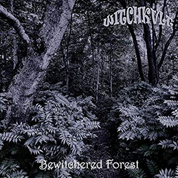 Bewitched Forest