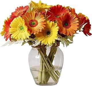 Best silk gerbera daisy arrangements Reviews