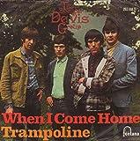 The Spencer Davis Group - When I Come Home / Trampoline - 7' Single 1966 - Fontana TF 739