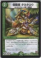 デュエルマスターズ 侵略者 タネタロウ/ 燃えろドギラゴン!!(DMR17)/ 革命編 第1章/シングルカード