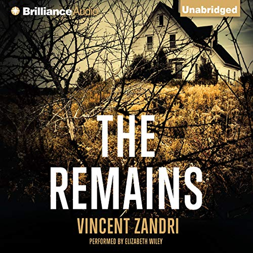 The Remains Audiobook By Vincent Zandri cover art
