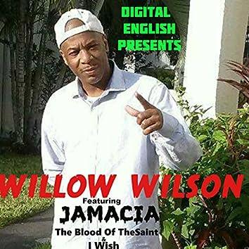 Digital English Presents Willow Wilson