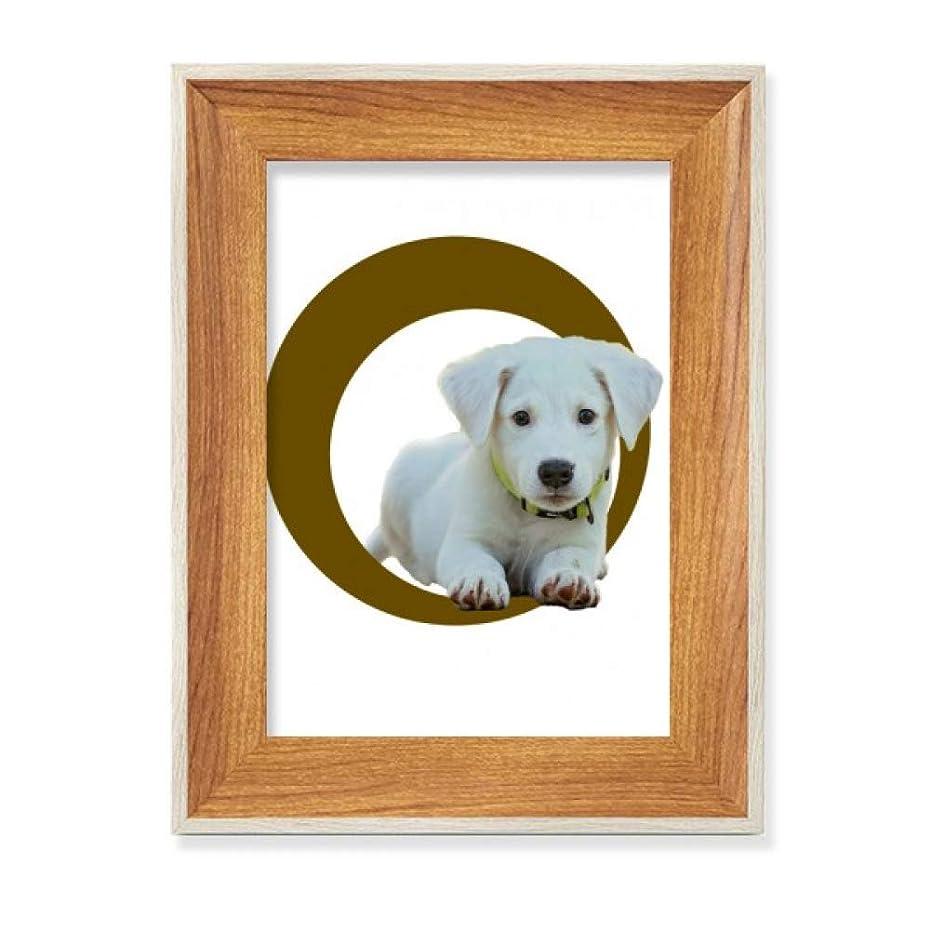チケットゆるく助言するクラウチング犬ホワイトリングペット デスクトップ木製フォトフレームディスプレイアート絵画セット