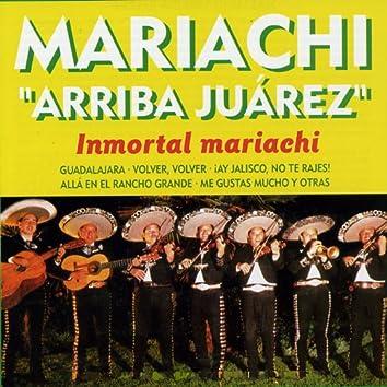 Inmortal Mariachi