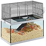 Ferplast Cages pour Gerbilles Gabry 60 Petits Rongeurs, Structure à 2 Étages, Accessoires Inclus, Cuve en Verre et Grillage en Métal Vernis Noir, 60 X 31,5 X H 52 cm
