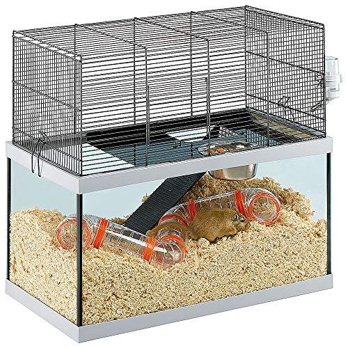 Ferplast Jaula para Ratones Gabry 60 pequeños roedores, Estructura en Dos Niveles, Accesorios incluidos, depósito de Cristal y Rejilla metálica lacada en Negro, 60 x 31,5 x 52 cm