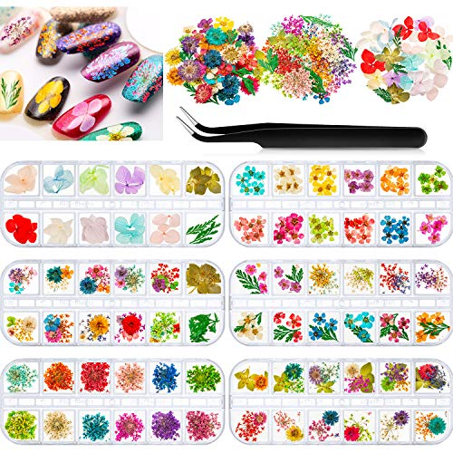 262 Pieces Nail Dried Flowers Natural Dried Flower Nail Art Dry Flowers Gypsophila Leaves Nail Decoration Stickers with Black Tweezers, 3D Nail Applique Nail Art Accessories for Tips Manicure Decor