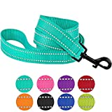 CollarDirect Nylon Dog Leash 5ft for Daily Outdoor Walking Running Training Heavy Duty Reflective Pet Leashes...