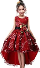 WEONEDREAM Princess Girls Dress for Wedding Birthday Party with Train Size 3-14 Years