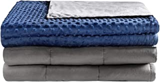 Anjee Weighted Blankets 20 lbs for Adults with Removable Minky Dot Cover, Heavy Blanket with Premium Glass Beads Suitable for Full Size Bed, Grey/Navy Blue, 60 x 80 Inches