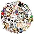 SJUNJIE 80 Stück Vinyl Aufkleber Süße Katzen Ei