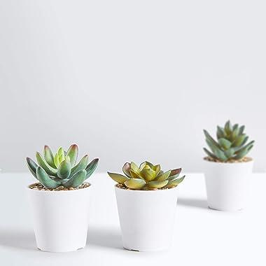 HapeeFun Succulentes Artificielles, 6 pcs Plante Artificielle Interieur, Fausse Plantes avec Pot, Plante Artificielle Deco po