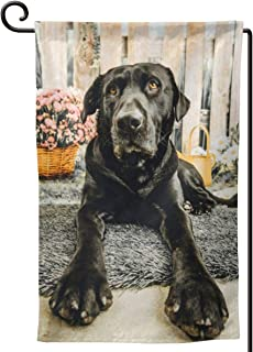 KiuLoam Garden Flag,Cute Portrait of Black Lab Dog Polyester Double Sided Outdoor Flag House Banner for Yard Home Decor 12.5 x 18 Inch