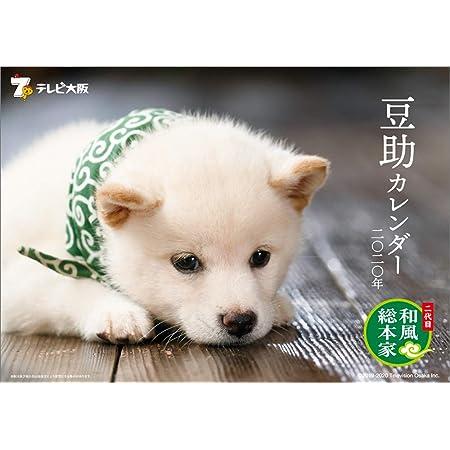 テレビ大阪 二代目 和風総本家 豆助 2020年 カレンダー 壁掛け CL-403