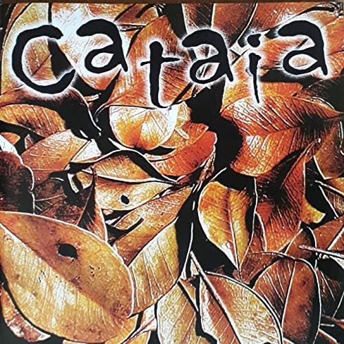 Banda Cataia