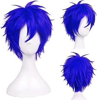 jellal cosplay wig