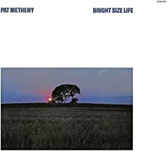 pat metheny bright size life