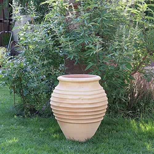 Kreta-Keramik | mediterrane hochwertige Amphore | 60 cm | frostfest | bauchiges Pflanzgefäß für Innen und Außen, Garten Terrasse Deko, Ficus