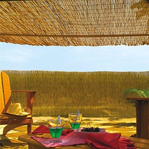 Desconocido 170972 - Bambú Chino Reedcane