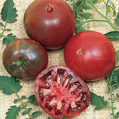 Burpee Black Krim Heirloom Beefsteak Slicing Tomato