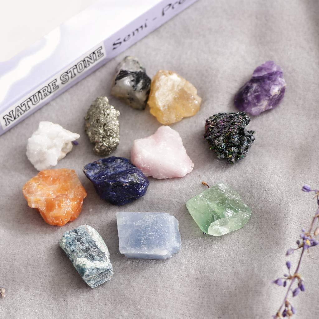 POFET PK546-5 Kit educativo de ciencia de geolog/ía colecci/ón de rocas y minerales 12 unidades