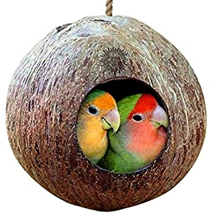 Natural Coconut Shell Bird House - Nesting bird house for cage or outside - Finch, Parakeet, Sparrows' Eco-friendly Feeder - Natural texture encourages Foot and Beak Exercise - Includes hanging loop