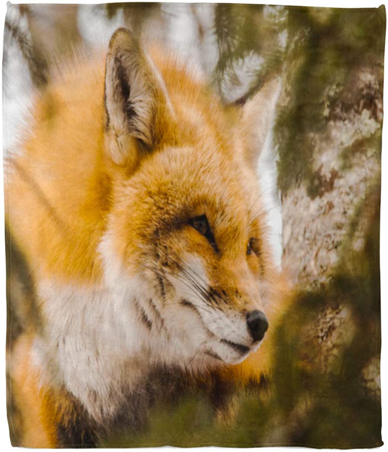 Emvency Throw Blanket Warm Cozy Print Flannel Animal Beautiful Red Fox in Tree Closeup Cute Comfortable Soft for Bed Sofa and Couch 50x60 Inches
