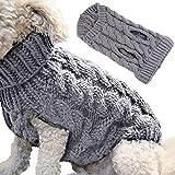 futureyun Sudadera con capucha para perro, para cachorro, otoño, invierno, color gris