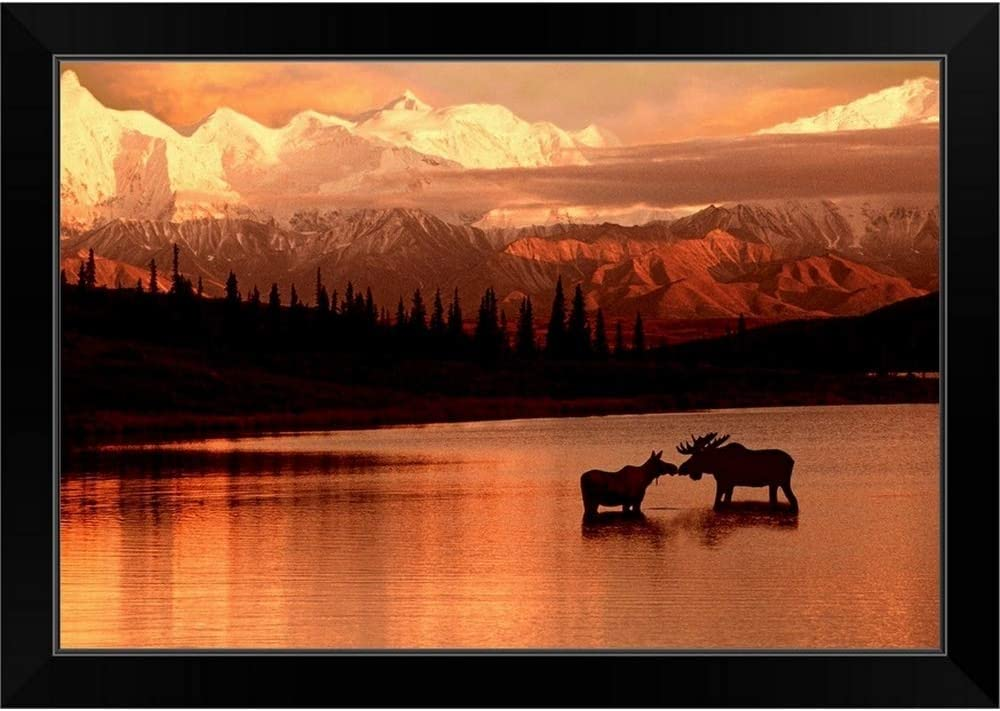 Max 73% OFF CANVAS Time sale ON DEMAND Moose Kissing in NP Wonder Denali Lake Fr Black