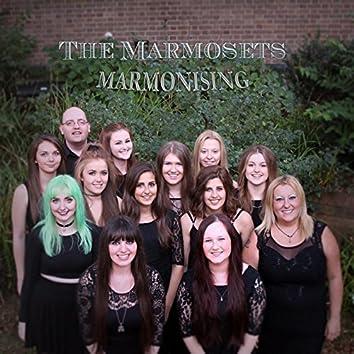 Marmonising