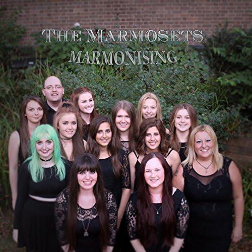 The Marmosets