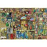 GYZ Puzzles, estantería mágica Singular, 300 Piezas, Rompecabezas de Madera, Rompecabezas Planos, Series de fantasía, Rompecabezas solubles, Regalos para Amigos. Bricolaje